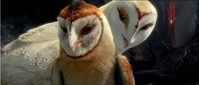 Movie Photo: Legend of the Guardians: The Owls of Ga'Hoole (7)