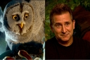 Movie Photo: Legend of the Guardians: The Owls of Ga'Hoole (6)