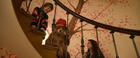 Movie Photo: Paddington (3)