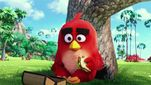 Movie Photo: The Angry Birds Movie (17)