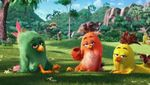 Movie Photo: The Angry Birds Movie (14)