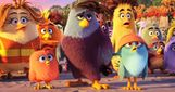 Movie Photo: The Angry Birds Movie (13)