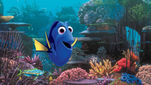 Movie Photo: Finding Dory (1)