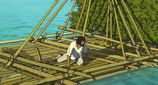 Movie Photo: The Red Turtle (17)