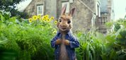 Movie Photo: Peter Rabbit (10)