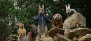 Movie Photo: Peter Rabbit (4)