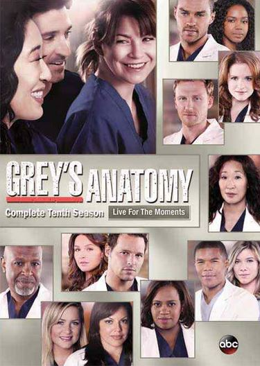 Grey's Anatomy Season 10 Poster